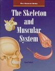 9780817248055: The Skeleton and Muscular System (Human Body (Austin, Tex.).)