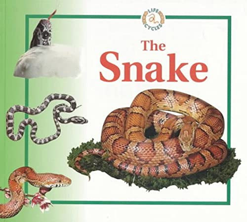 9780817262358: The Snake (Life Cycles)