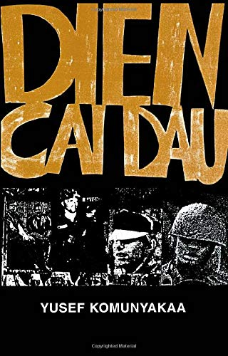 9780819521637: Dien Cai Dau (Wesleyan Poetry Series)