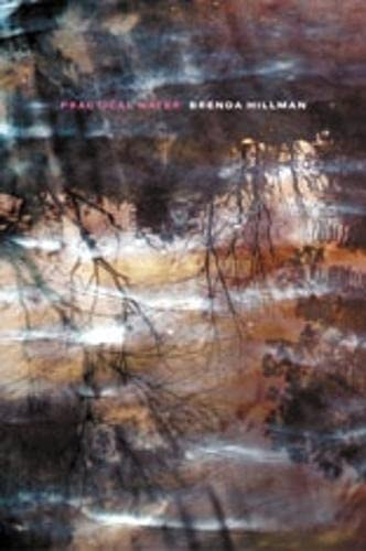 Practical Water (Signed First Edition): Brenda Hillman