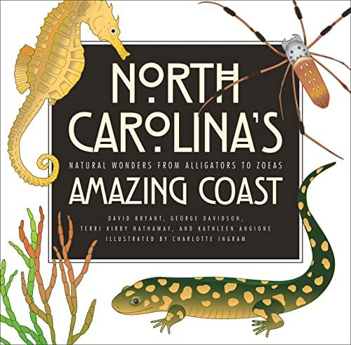 North Carolinas Amazing Coast