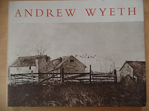 9780821201701: Andrew Wyeth Dry Brush and Pencil Drawings