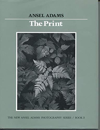 9780821215265: New Photo Series 3: Print