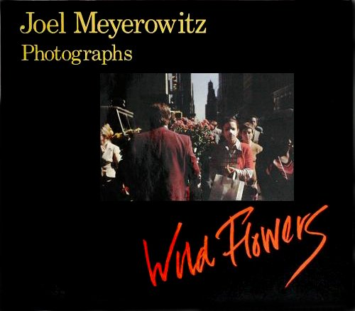 Wild Flowers (A New York Graphic Society book) (0821215280) by Joel Meyerowitz