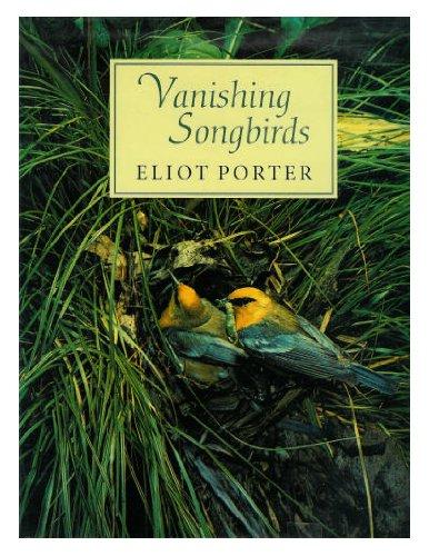 Vanishing Songbirds: The Sixth Order : Wood: Porter, Eliot, Kaufman,