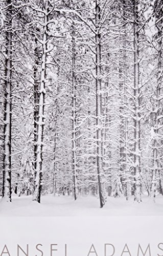 9780821224212: Pine Forest in Snow, Yosemite National Park, California, 1932