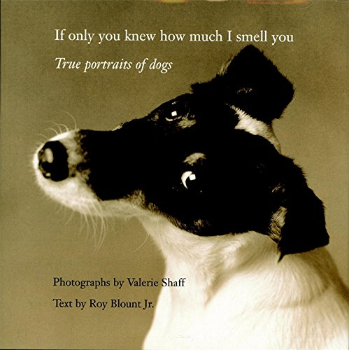 9780821228302: If Only You Knew How Much I Smell You: True Portrait of Dogs