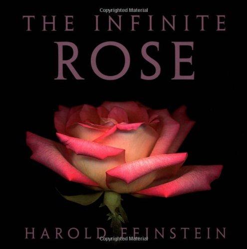 9780821228753: The Infinite Rose