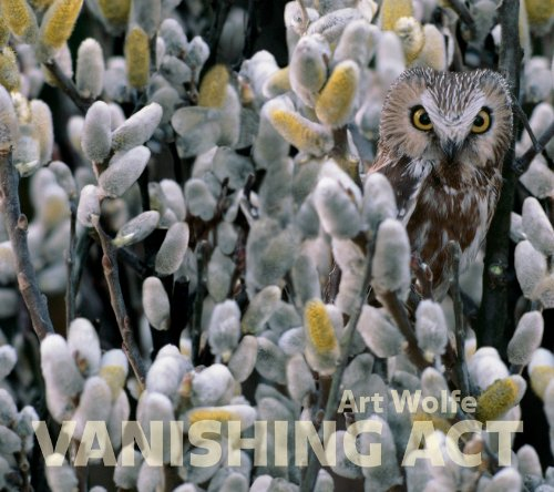 Vanishing Act: Art Wolfe