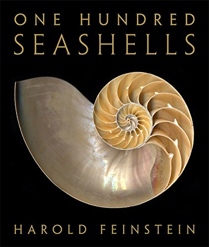 9780821262061: One Hundred Seashells