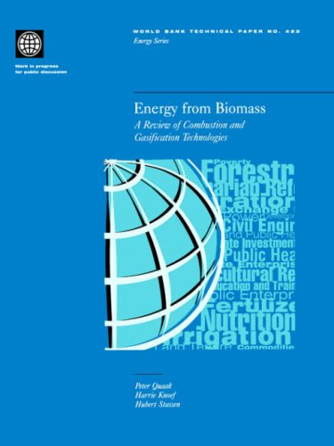 9780821343357: Energy from Biomass: A Review of Combustion and Gasification Technologies (World Bank Technical Paper)