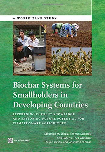 9780821395257: Biochar Systems for Smallholders in Developing Countries: Leveraging Current Knowledge and Exploring Future Potential for Climate-Smart Agriculture (World Bank Studies)