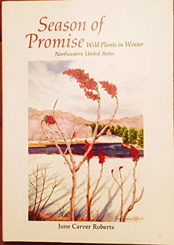 Season of Promise: Wild Plants in Winter Northeastern United States: Roberts, June Carver