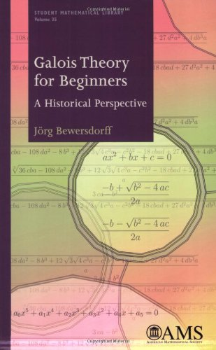 9780821838174: Galois Theory for Beginners: A Historical Perspective (Student Mathematical Library) (Student Matehmatical Library)