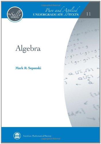9780821852941: Algebra (Pure and Applied Undergraduate Texts)