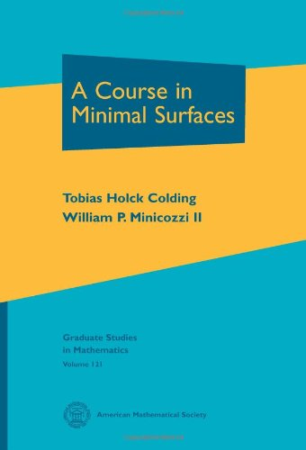 9780821853238: A Course in Minimal Surfaces