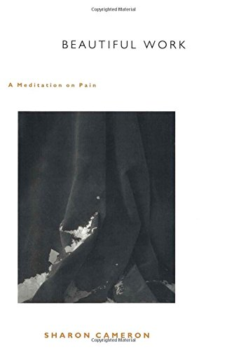9780822325086: Beautiful Work: A Meditation on Pain