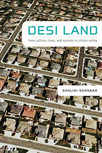 9780822343158: Desi Land: Teen Culture, Class, and Success in Silicon Valley