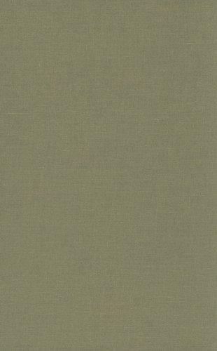 9780822344568: Ruins of Modernity (Politics, History, & Culture)