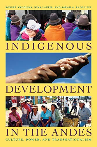 9780822345404: Indigenous Development in the Andes: Culture, Power, and Transnationalism (New Slant)