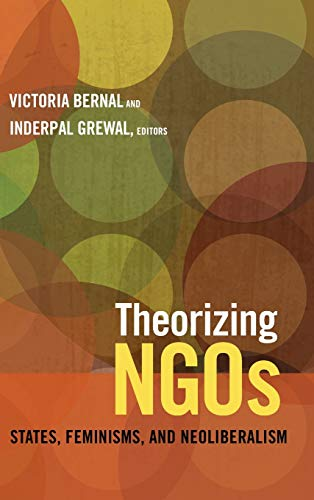 Theorizing NGOs: States, Feminisms, and Neoliberalism (Next Wave: New Directions in Women's ...