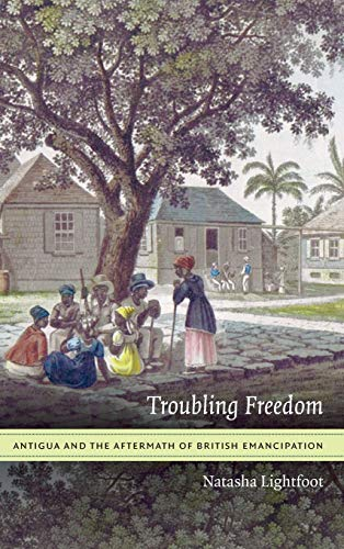 9780822359753: Troubling Freedom: Antigua and the Aftermath of British Emancipation