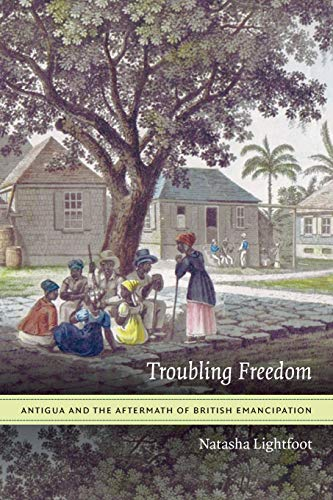 9780822360070: Troubling Freedom: Antigua and the Aftermath of British Emancipation