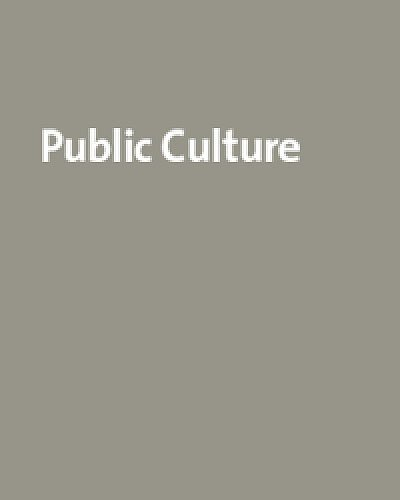 9780822366102: Johannesburg: The Elusive Metropolis (Public Culture (Durham, N.C.))