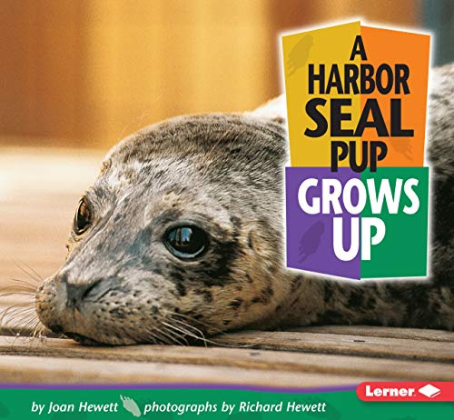 9780822500926: A Harbor Seal Pup Grows Up (Baby Animals)
