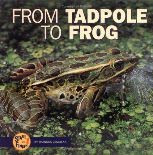 9780822503996: From Tadpole to Frog (Start to Finish)