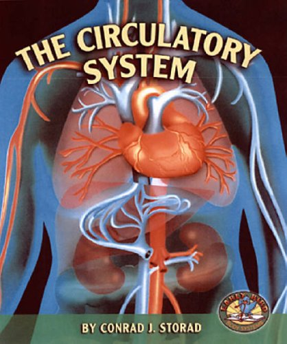 9780822525189: The Circulatory System (Early Bird Body Systems)