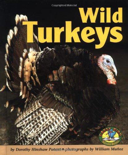 9780822530268: Wild Turkeys (Early Bird Nature)