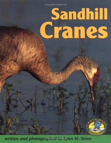 Sandhill Cranes (Early Bird Nature): Stone, Lynn M.