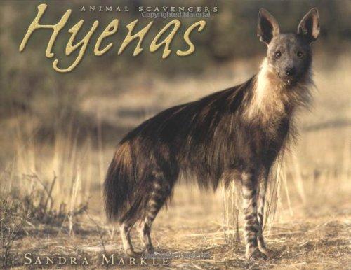 9780822531944: Hyenas (Animal Scavengers)