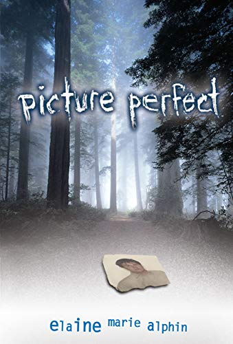 9780822564683: Picture Perfect