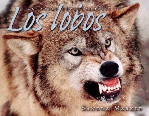 9780822564898: Los Lobos = Wolves (Animales Depredadores/Animal Predators)