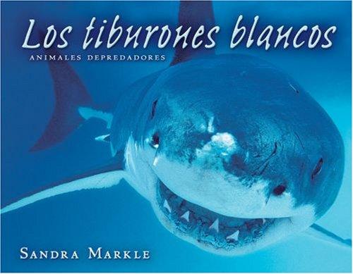 9780822566274: Los Tiburones Blancos/Great White Sharks (Animales Depredadores/Animal Predators)