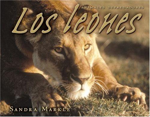 9780822566281: Los Leones / Lions (Animales Depredadores / Animal Predators)