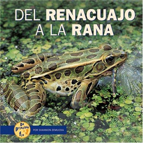 9780822566342: del Renacuajo a la Rana (de Principio a Fin (Start to Finish)) (Spanish Edition)