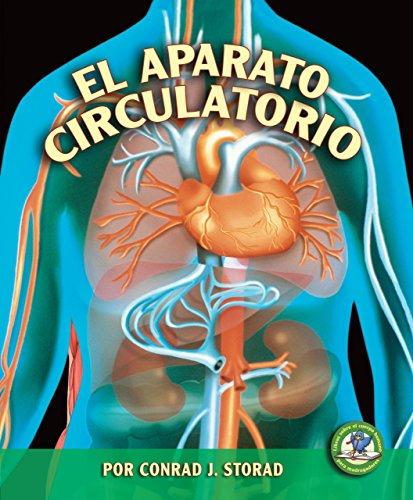 9780822566533: El Aparato Circulatorio (Libros Sobre El Cuerpo Humano Para Madrugadores) (Spanish Edition) (Libros Sobre El Cuerpo Humano Para Mandrugadores/Early Bird Body Systems)