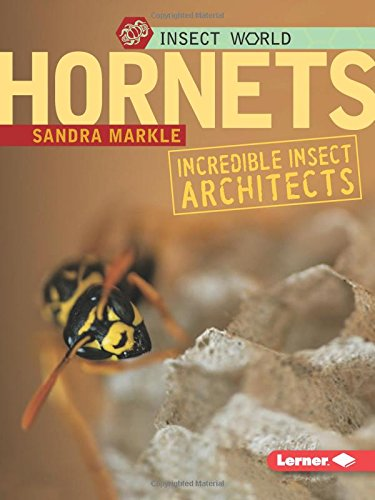 9780822572978: Hornets: Incredible Insect Architects (Insect World)