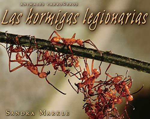 9780822577348: Las Hormigas Legionarias (Animales Carroneros) (Spanish Edition)