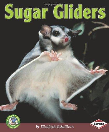 Sugar Gliders (Early Bird Nature Books): Elizabeth O'sullivan