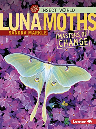 9780822589891: Luna Moths: Masters of Change (Insect World)