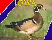 Iowa (Hello U.S.A.): Ladoux, Rita