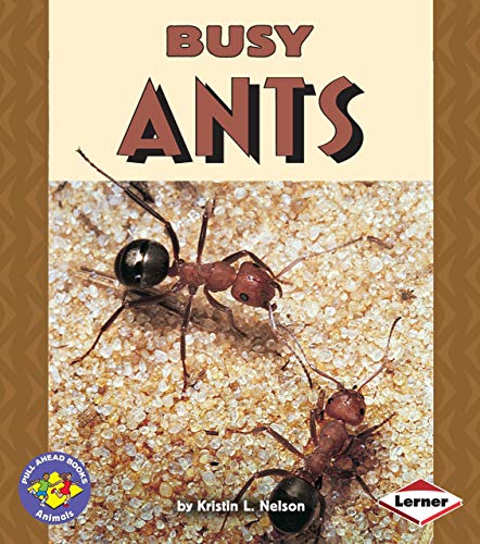 Busy Ants (Pull Ahead Books): Kristin L. Nelson