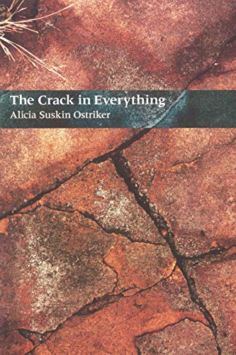9780822955931: The Crack In Everything (Pitt Poetry Series)