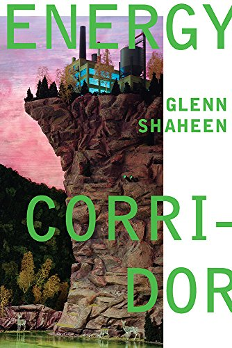 9780822963851: Energy Corridor (Pitt Poetry Series)