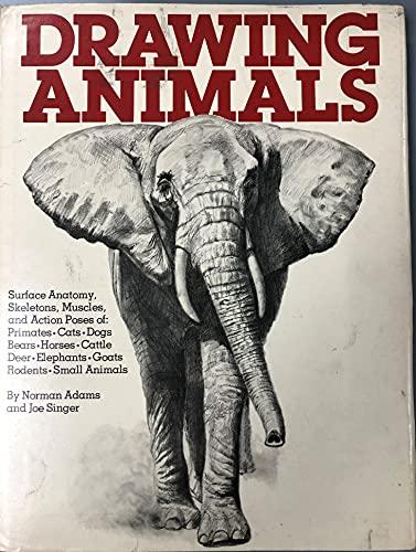 9780823013616: Drawing Animals