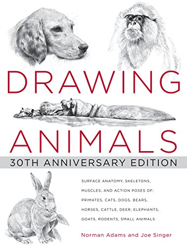 9780823013661: Drawing Animals